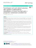 Psychological and work-related outcomes after inpatient multidisciplinary rehabilitation of chronic low back pain: A prospective randomized controlled trial