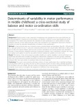 Determinants of variability in motor performance in middle childhood: A cross-sectional study of balance and motor co-ordination skills