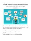 Tổ chức marketing (Marketing Organization) là gì? Nguyên tắc và cơ cấu tổ chức marketing