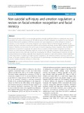Non-suicidal self-injury and emotion regulation: A review on facial emotion recognition and facial mimicry