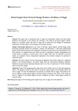 Global supply chain network design problem with rules of origin