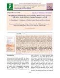 Morphological and molecular characterization of Marssonina coronaria (Ellis & J.J. Davis) J.J. Davis causing premature leaf fall