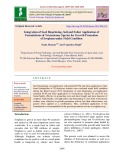 Integration of seed biopriming, soil and foliar application of formulations of Trichoderma species for growth promotion of sorghum under field condition