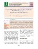 Screening of different cultivar of paddy and wheat against root-knot nematode Meloidogyne graminicola