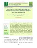 Effect of aloe vera coating on quality of Indo-pacific king mackerel (Scomberomorus guttatus) chunks during chilled storage
