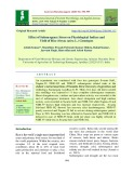 Effect of submergence stress on physiological indices and yield of rice (Oryza sativa L.) genotypes