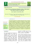 Induced tolerance mechanism of resistance in rice to white backed plant hopper through zinc application