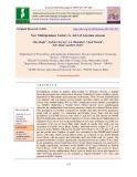 New multipetalous variety G. Ad.1 of adenium obesum
