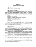 Hệ thống báo cáo tài chính theo Quyết định 15