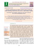 Genotypic and phenotypic correlation and path analysis of yield and yield contributing traits in rice (Oryza sativa L.) under salinity condition