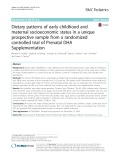Dietary patterns of early childhood and maternal socioeconomic status in a unique prospective sample from a randomized controlled trial of Prenatal DHA Supplementation