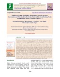Studies on genetic variability, heritability, genetic advance, correlation and path analysis for grain yield and its contributing traits in indigenous wheat (Triticum aestivum L.)