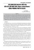 Xác định gen dehydrin kiểu SKn của cây sồi Nhật Bản (Fagus cretana Blume) bằng phương pháp in silico