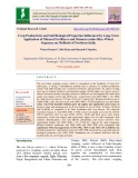 Crop productivity and soil biological properties influenced by long term application of mineral fertilizers and manures under rice-wheat sequence on mollisols of Northern India