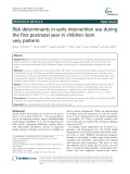 Risk determinants in early intervention use during the first postnatal year in children born very preterm