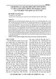Ảnh hưởng của mật độ trồng đến sinh trưởng và chất lượng rừng trồng Mỡ (Manglietia conifera) tại vùng đệm Vườn Quốc gia Xuân Sơn