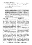 Ảnh hưởng của ánh sáng đơn sắc trong nuôi cấy mô cây lan Hoàng thảo kèn (Dendrobium lituiflorum) in vitro