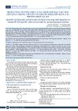 Định lượng Nicotinamid và xác định giới hạn tạp chất liên quan trong viên sủi Vitamin PP 250mg/OPC bằng các phương pháp sắc ký