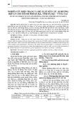 Nghiên cứu hiện trạng và đề xuất kết cấu áo đường hợp lý cho thành phố Bà Rịa, tỉnh Bà Rịa – Vũng Tàu
