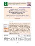 ISSR-Based molecular characterization of opium poppy (Papaver somniferum L.) genotypes