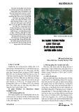 Đa dạng thành phần loài tảo lục ở hồ Xuân Dương huyện Diễn Châu