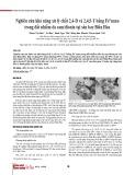 Nghiên cứu khả năng xử lý chất 2,4-D và 2,4,5-T bằng Fe0 nano trong đất nhiễm da cam/dioxin tại sân bay Biên Hòa