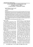 Xây dựng hệ thống tái sinh bạch đàn urô (Eucalypyus urophylla S.T. Blake) từ mô sẹo phục vụ chọn dòng tế bào
