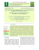 Effect of different varieties and sowing dates on growth, productivity and economics of wheat (Triticum aestivum L.)