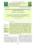 Wheat heat tolerance: Mechanism, impact and quantitative trait loci associated with heat tolerance