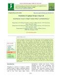 Simulation of applique designs using cad