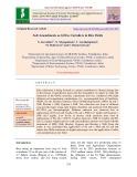 Soil amendments as GHGs curtailers in rice fields