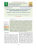 Effect of zinc and boron application on leaf area, photosynthetic pigments, stomatal number and yield of cashew