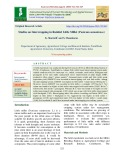 Studies on intercropping in rainfed little millet (Panicum sumatrense)