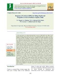 Response of cotton to different tillage depth and irrigation levels in Southern Gujarat, India
