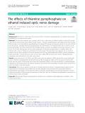 The effects of thiamine pyrophosphate on ethanol induced optic nerve damage