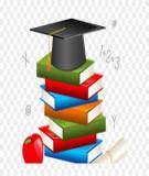 Khóa luận tốt nghiệp: Một số giải pháp nhằm nâng cao hiệu quả sử dụng vốn ở công ty TNHH in bao bì TM – DV Tân Thái Phương