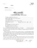 Mẫu Bản cam kết bảo mật tiền lương
