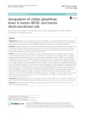 Upregulation of cellular glutathione levels in human ABCB5- and murine Abcb5-transfected cells