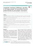 Liraglutide modulates GABAergic signaling in rat hippocampal CA3 pyramidal neurons predominantly by presynaptic mechanism