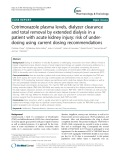 Cotrimoxazole plasma levels, dialyzer clearance and total removal by extended dialysis in a patient with acute kidney injury: Risk of underdosing using current dosing recommendations