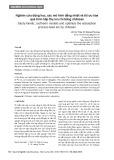 Nghiên cứu động học, các mô hình đẳng nhiệt và tối ưu hóa quá trình hấp thụ ion chì bằng chitosan