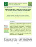 Influence of organic manures on number effective tillers per plant, leaf area (LA) and leaf area index (LAI) in wheat (Triticum aestivum L.)