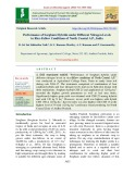 Performance of sorghum hybrids under different nitrogen levels in rice-fallow conditions of North Coastal A.P., India