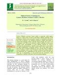 Minisett nursery techniques in cassava (Manihot esculenta Crantz): A review