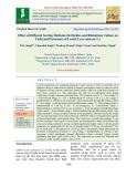 Effect of different sowing methods, herbicides and rhizobium culture on yield and economics of lentil (Lens culinaris L.)
