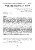 Khảo sát tác dụng tăng lực của các chế phẩm từ cây đinh lăng (Polyscias fruticosa (L.) Harms)