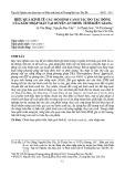 Hiệu quả kinh tế các mô hình canh tác do tác động của xâm nhập mặn tại huyện An Minh, tỉnh Kiên Giang