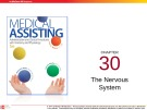 Lecture Medical assisting: Administrative and clinical procedures (5e) - Chapter 30: The nervous system