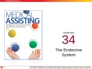 Lecture Medical assisting: Administrative and clinical procedures (5e) - Chapter 34: The endocrine system