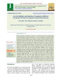 Growth inhibition and induction of apoptosis in different carcinoma cell lines by euphorbia tirucalli stem extracts